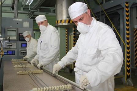 изготовлены экспериментальные сборки со СНУП топливом